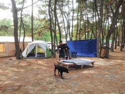 Camping in the ROK