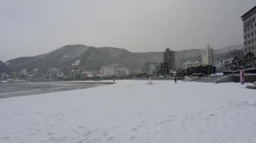 Song Jeong